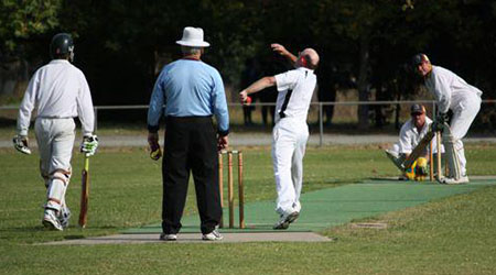 Community cricket